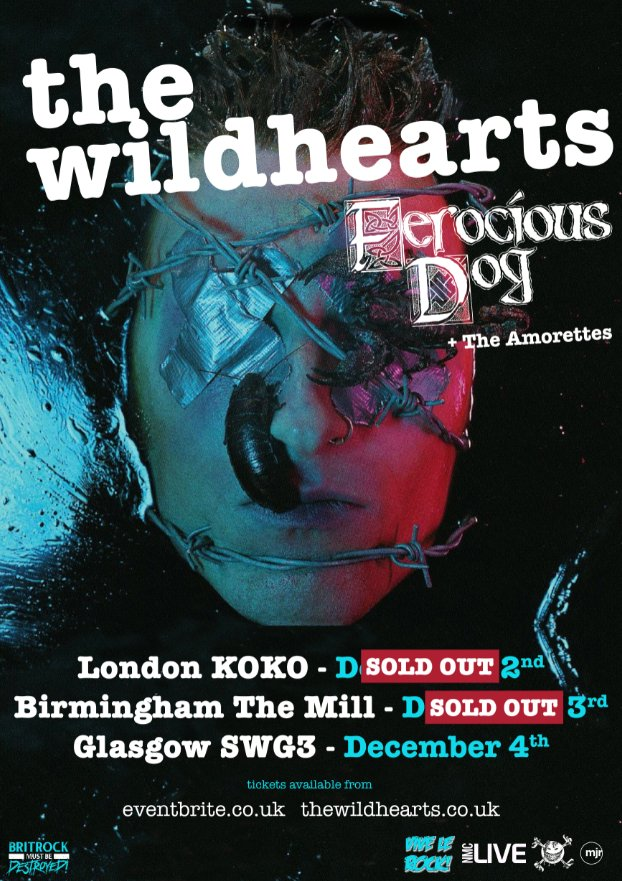 Live Review: Rocking out with The Wildhearts