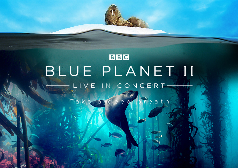 Live Review: Making a splash with Blue Planet II in Glasgow