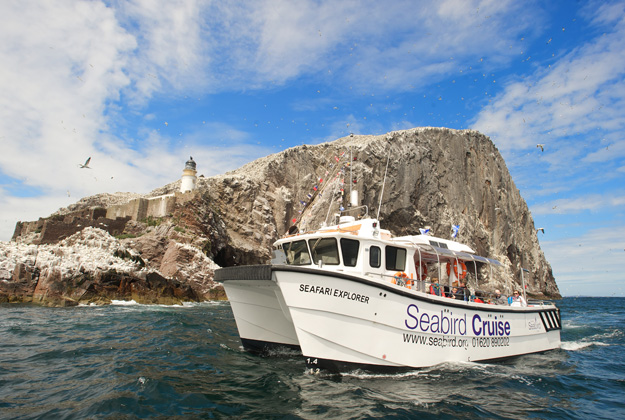 Dive into the Scottish Seabird Centre this Spring!